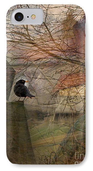 IPhone Case featuring the photograph Blackbird by Liz  Alderdice
