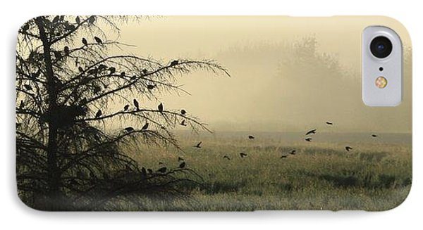 Blackbirds Singing In The Morning Fog IPhone Case