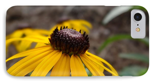 IPhone Case featuring the photograph Blackeyed Susan by Alan Lakin