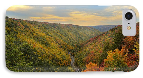 Blackwater Gorge With Fall Leaves Phone Case by Dan Friend
