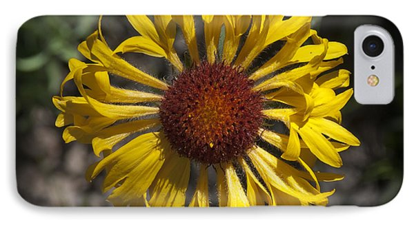 Blanket Flower IPhone Case