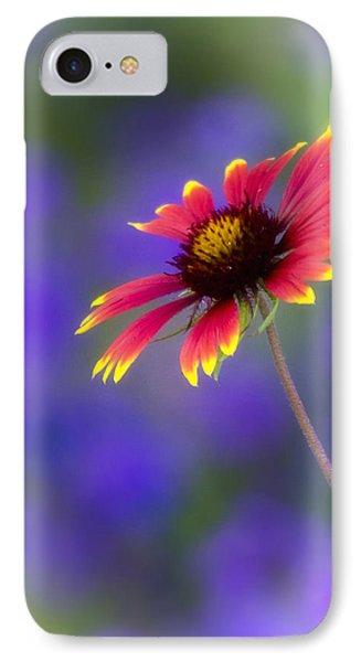 Blanket Flower  Phone Case by Saija  Lehtonen