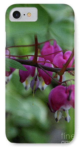 IPhone Case featuring the photograph Bleeding Heart by Linda Shafer