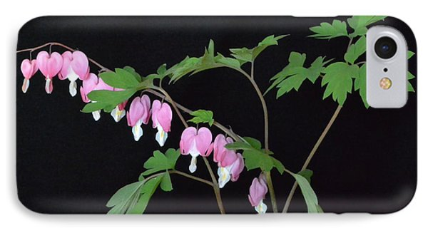 IPhone Case featuring the photograph Bleeding Hearts 2 by Jeannie Rhode