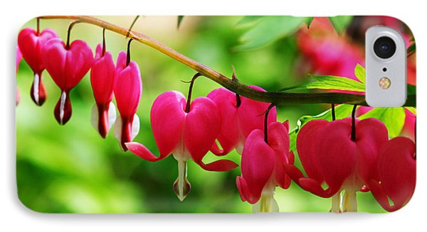 Romantic Bleeding Hearts IPhone Case