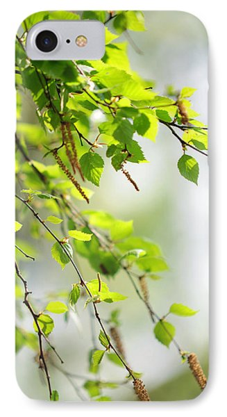 Blooming Birch Tree At Spring Phone Case by Jenny Rainbow