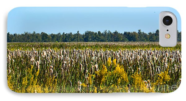 Blooming Cattails As Far As The Eye Can See IPhone Case by Christine Dekkers