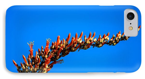 Blooming Ocotillo Phone Case by Robert Bales