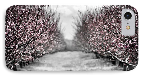 Blooming Peach Orchard IPhone 7 Case by Elena Elisseeva