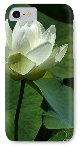 Blooming White Lotus IPhone Case by Sabrina L Ryan