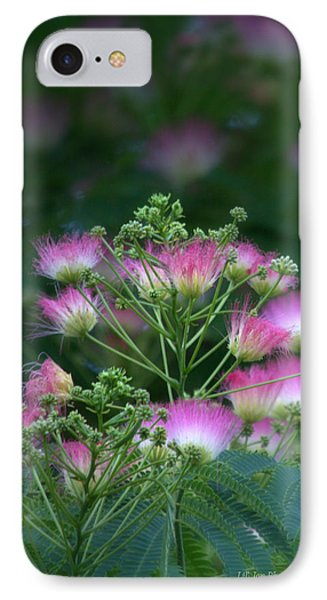 Blooms Of The Mimosa Tree IPhone Case