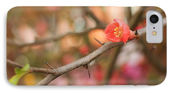IPhone Case featuring the photograph Blossom Amidst The Thorns by Lisa Knechtel
