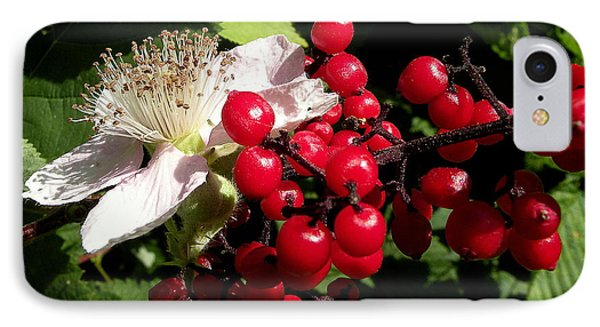 Blossom And Berries IPhone Case by Brian Chase
