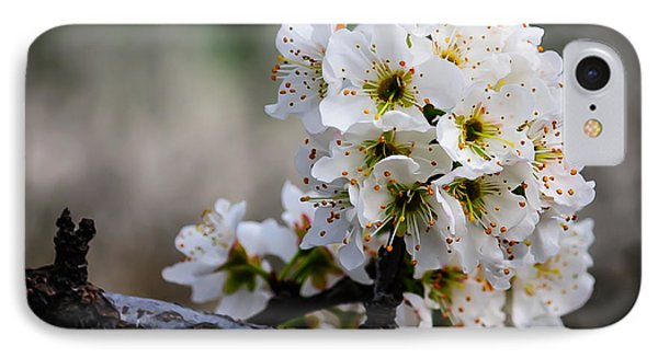 Blossom Gathering IPhone Case by Terry Garvin