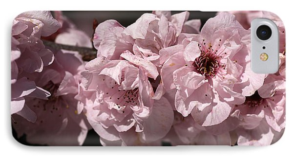 Blossom In Pink Phone Case by Joy Watson