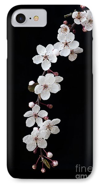 Blossom On Black Phone Case by Tim Gainey
