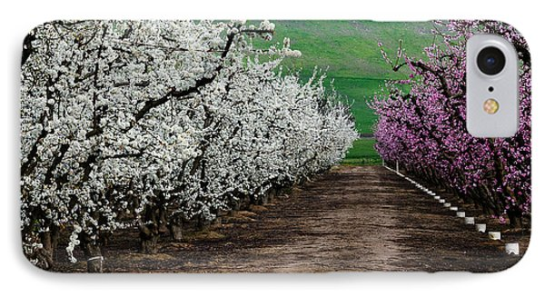 Blossom Standoff IPhone Case by Terry Garvin