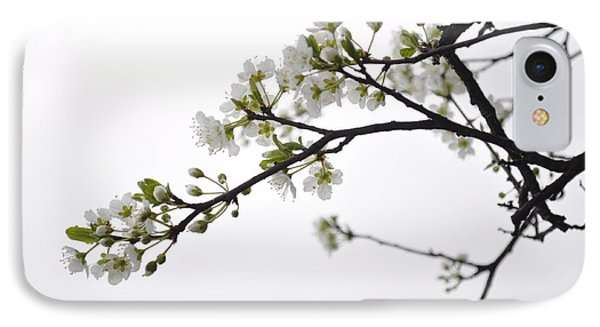 IPhone Case featuring the photograph Blossoms by Kristen R Kennedy