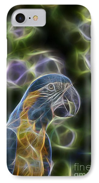 Blue And Gold Macaw  IPhone Case by Douglas Barnard