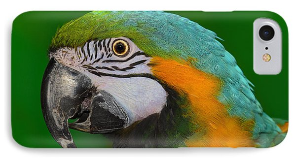 Blue And Gold Macaw Phone Case by Tony Beck