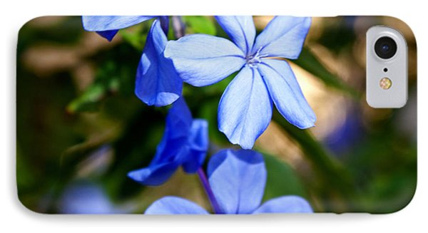 IPhone Case featuring the photograph Blue Beauty by Jean Haynes
