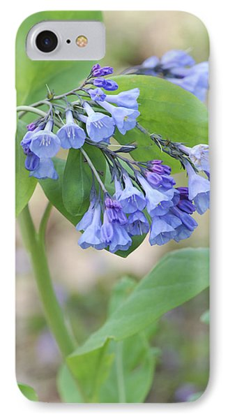 IPhone Case featuring the photograph Blue Bells Of Lapsley's Run by Phyllis Peterson