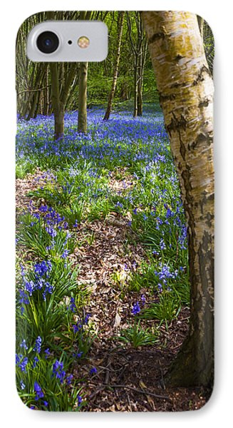 Blue Bells Path Phone Case by Svetlana Sewell