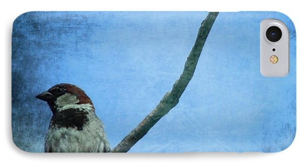 Sparrow On Blue IPhone Case by Dan Sproul