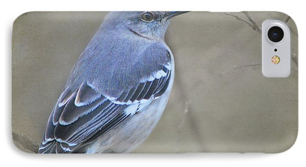 Blue Bird IPhone Case by Linda Segerson