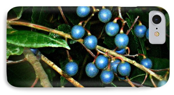 IPhone Case featuring the photograph Blue Bush Berries  by Leanne Seymour