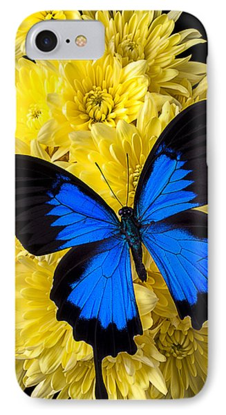 Blue Butterfly On Poms Phone Case by Garry Gay