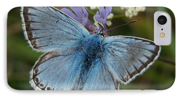Blue Butterfly IPhone Case by Ron Harpham