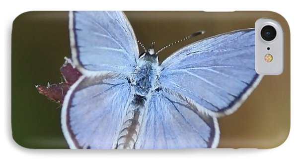 Blue Butterfly Square Phone Case by Carol Groenen