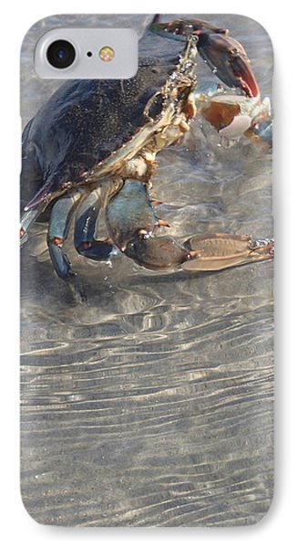 Blue Crab Chillin IPhone Case by Robert Nickologianis