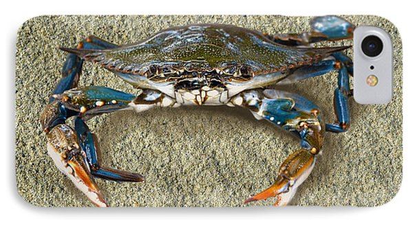 Blue Crab Confrontation IPhone Case by Sandi OReilly