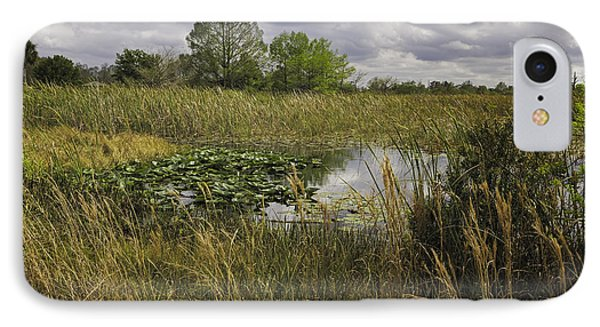Blue Cypress Wetlands IPhone Case by Fran Gallogly