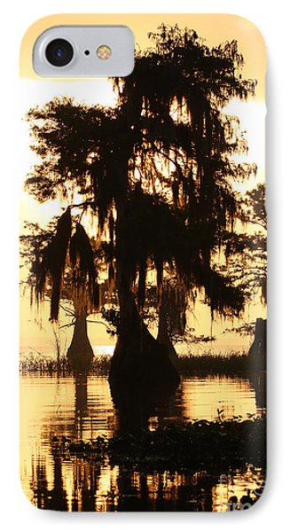 IPhone Case featuring the photograph Blue Cypress Yellow Light by Paul Rebmann