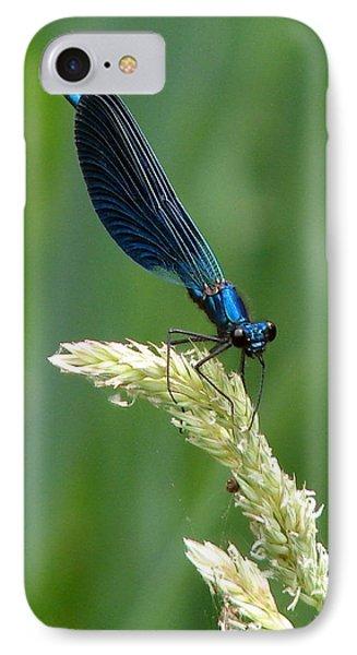 Blue Damselfly Phone Case by Ramona Johnston