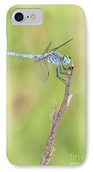 IPhone Case featuring the photograph Blue Dasher by Bryan Keil