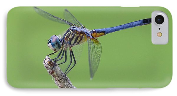 Blue Dasher Dragonfly Phone Case by Ester  Rogers