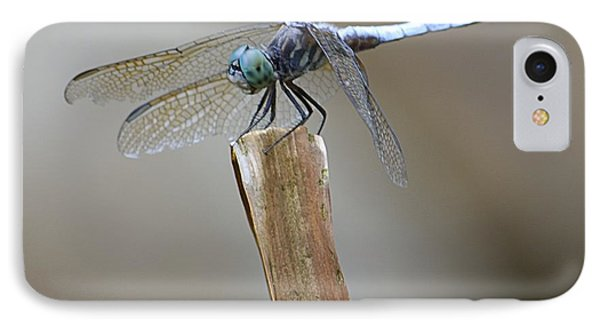 Blue Dasher IPhone Case by Randy Bodkins