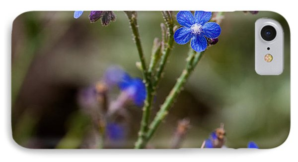 IPhone Case featuring the photograph Blue Delight by Uri Baruch