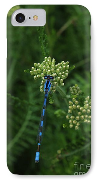 IPhone Case featuring the photograph Blue Dragonfly by Marjorie Imbeau