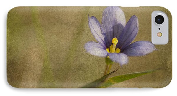 Blue Eyed Grass In Texture IPhone Case