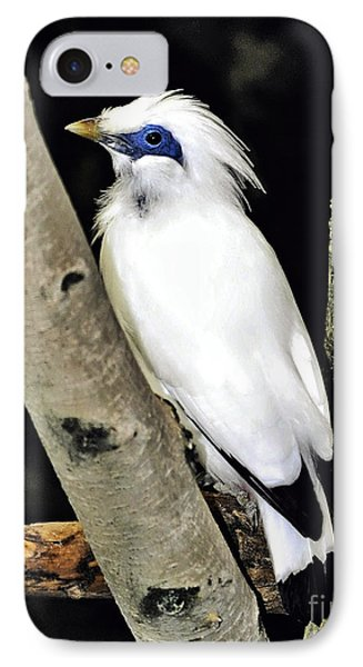 IPhone Case featuring the photograph Blue Eyes by Adam Olsen