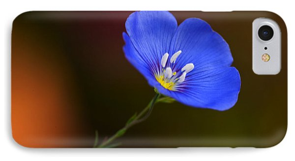 Blue Flax Blossom IPhone Case