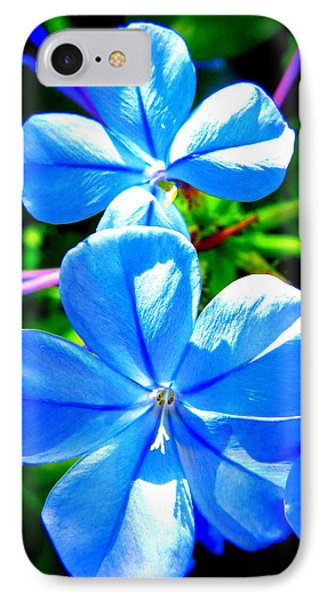 IPhone Case featuring the photograph Blue Flower by David Mckinney