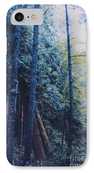 Blue Forest By Jrr Phone Case by First Star Art