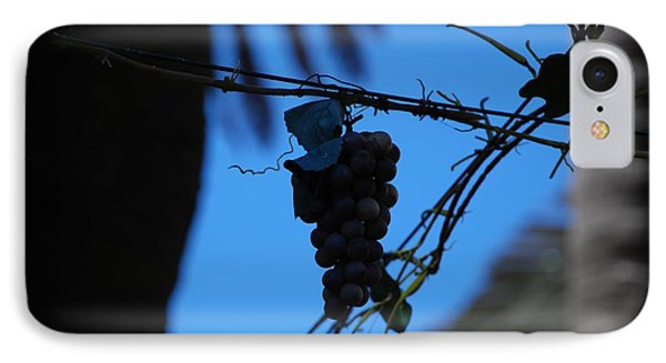 Blue Grapes Phone Case by Dany Lison