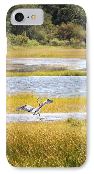 Blue Heron 2 IPhone Case by Jim Gillen